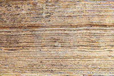 edges of antique book pages stock images image 12168124