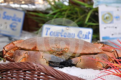 Edible crab on a market