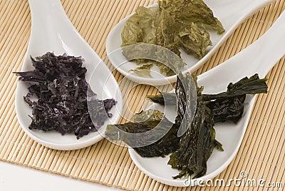 Edible seaweed.