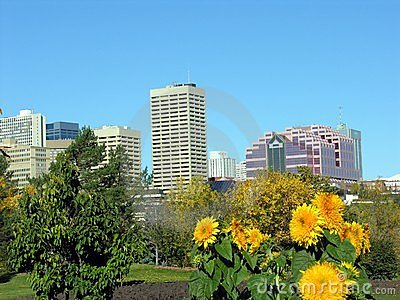 Edmonton with Flowers