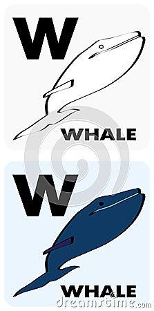 Educational flashcard W