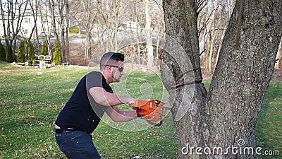 Een arbeider snijdt gevaarlijk bij een boom met kettingzaag terwijl onder een grote tak ALT2 stock videobeelden