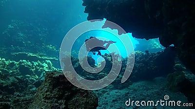 Een duiker gaat een holsysteem in stock videobeelden