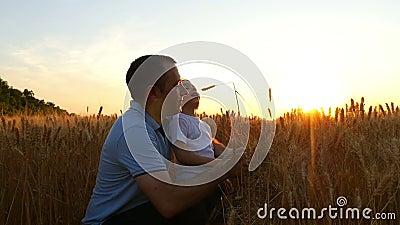 Een landbouwersmens en zijn zoon overwegen een tarwegewas, die op het gebied bij zonsondergang zijn De papa en het kind zijn gelu stock video