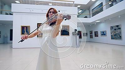 Een musicus speelt viool terwijl het presteren in een alleen museum stock videobeelden