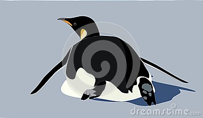 Een pinguïn die van de Keizer op zijn buik glijden