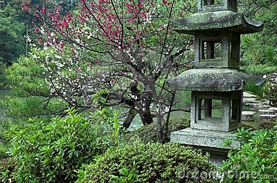Een steenlantaarn bij een Japanse Tuin in Kyoto, Japan
