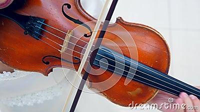 Een violist heeft een instrument op een schouder, gebruikt een fiasje terwijl hij speelt stock videobeelden