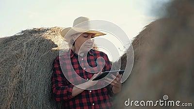 Een vrouw is een landbouwer met een tablet bij een hooiberg farming Voorbereiding van veevoeder voor de winter stock videobeelden
