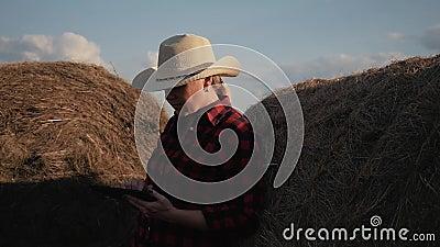 Een vrouw is een landbouwer met een tablet bij een hooiberg farming Voorbereiding van veevoeder voor de winter stock video