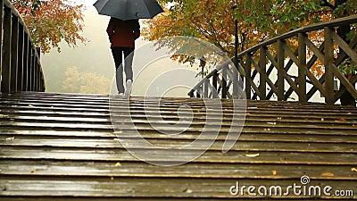 Een vrouw onder een paraplu stock videobeelden