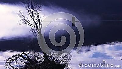 Eerie Misty Lake
