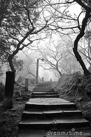 Free Eerie Pathway Royalty Free Stock Photography - 24245047
