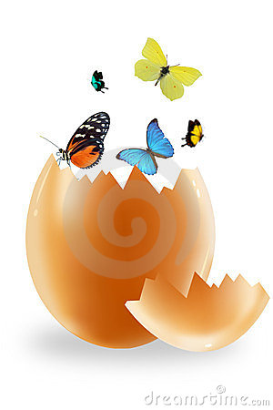 Egg and butterfly