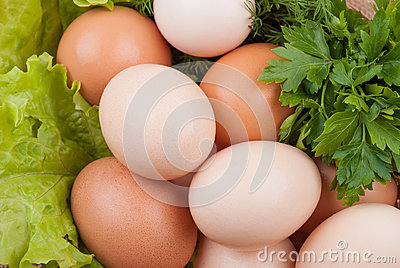 Egg with greens