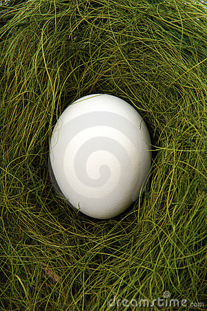 Free Egg In A Nest Stock Photo - 4240320