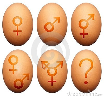 Egg o género