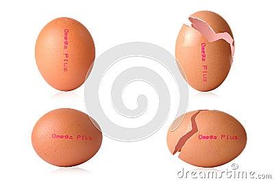 Egg omega plus