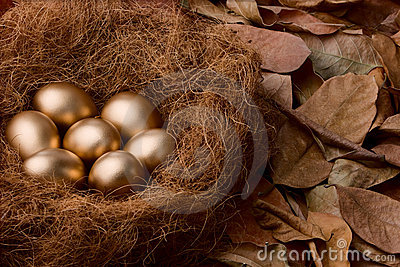 Egg series : Seven golden eggs (with background)