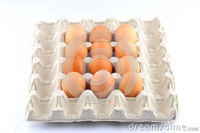 Egg shell