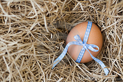 Egg tied with ribbon