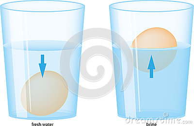 Egg And Water Stock Image - Image: 25628821