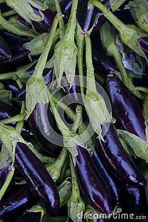 Free Eggplant Stock Photography - 13607112