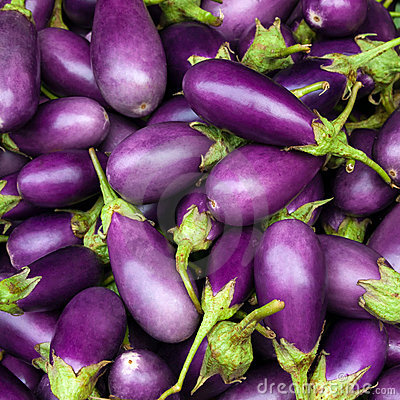 Free Eggplant Purple Royalty Free Stock Images - 16281769