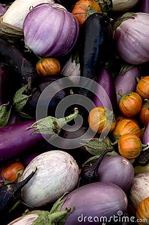 Free Eggplant Varieties Royalty Free Stock Image - 3025696