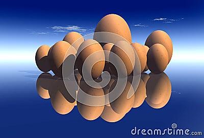 Eggs 23