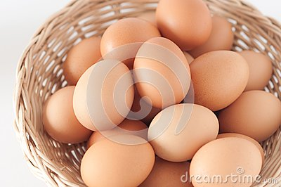 Eggs in the basket02