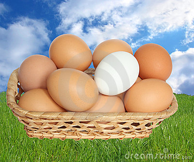 Eggs in basket.