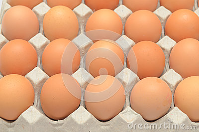 Eggs in a carton closeup view