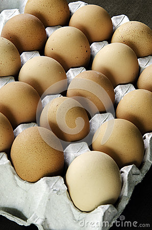 Eggs of chickens.