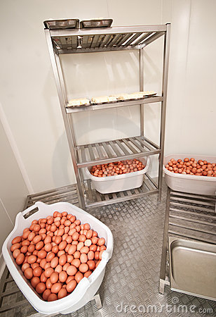 Eggs in cold storage