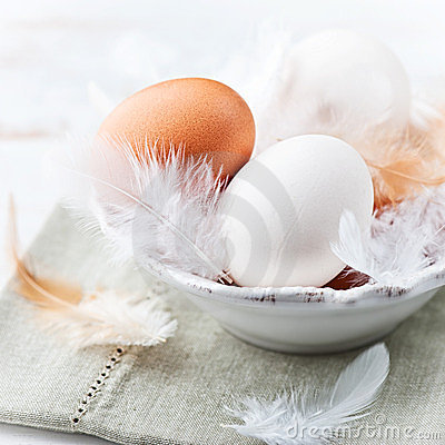 Eggs and Feathers in a Bowl