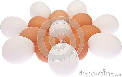 Eggs Flower