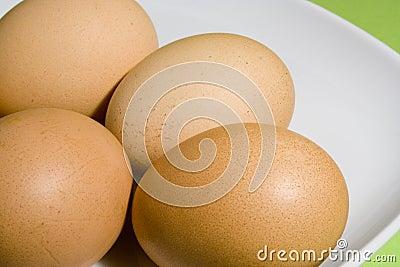 Eggs on fresh green background