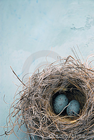 Free Eggs In A Nest Stock Photos - 4108243