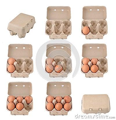 Free Eggs In An Egg Carton Stock Photos - 46381313