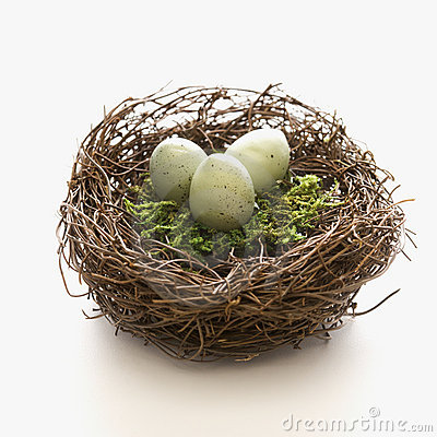 Free Eggs In Nest. Stock Photography - 2432232