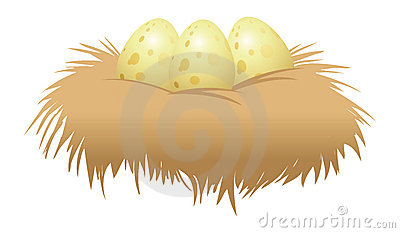 Eggs and nest