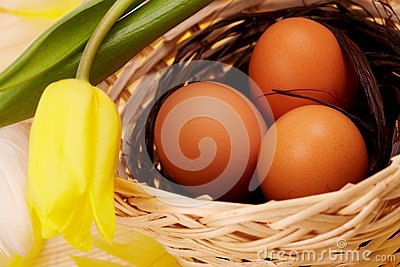Eggs in nest with flower