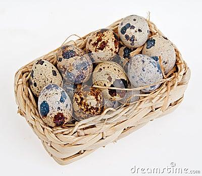 Eggs of a quail