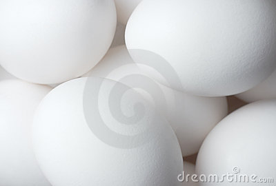 Eggs solid background
