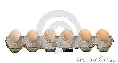 Eggs tray on white isolation