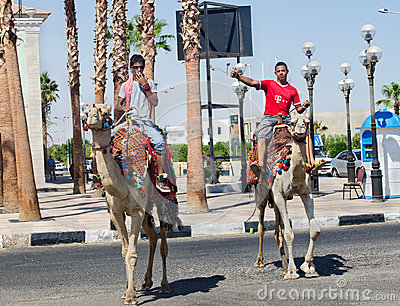 Egypt. Sharm El Sheikh. 2 young men on camels in the streets. Editorial Photo