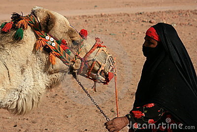 Egyptian bedouin with camel