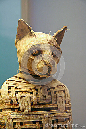 Egyptian Cat Mummy Editorial Photography