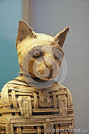 Egyptian Cat Mummy Editorial Photography
